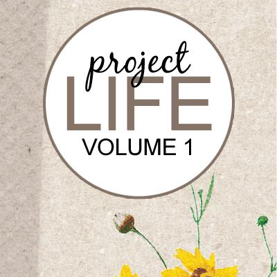 Project Life: Vol 1
