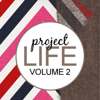 Project Life: Vol 2