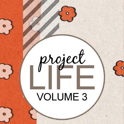 Project Life: Vol 3