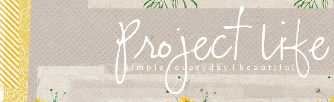 Project Life Header