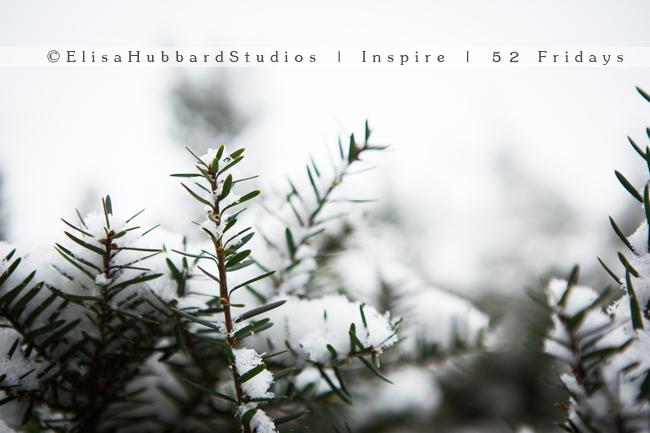 Inspire | 52 Fridays: 4