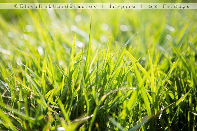 Inspire | 52 Fridays: 14