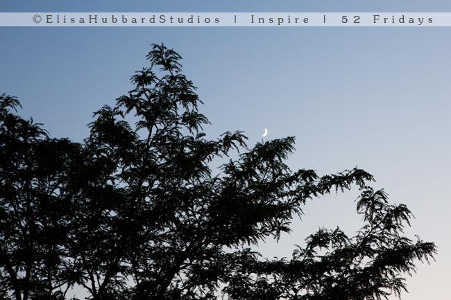 Inspire | 52 Fridays: 28