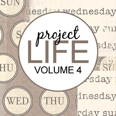 Project Life: Vol 4