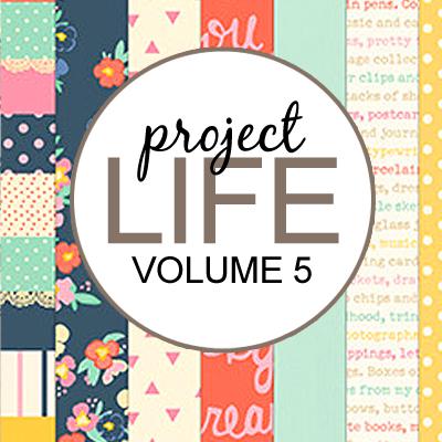 Project Life: Vol 5
