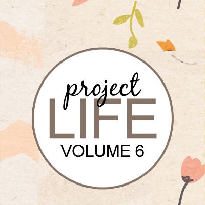 Project Life: Vol 6