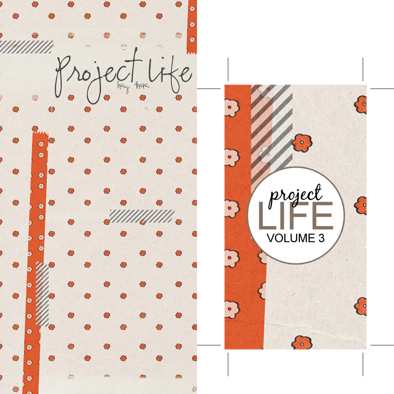 pl3-Cover+Spine