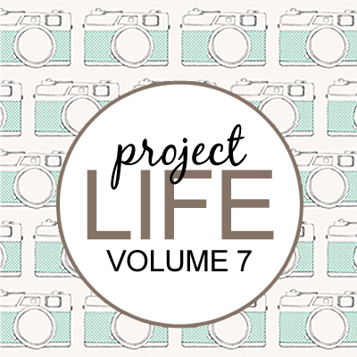 Project Life: Vol 7