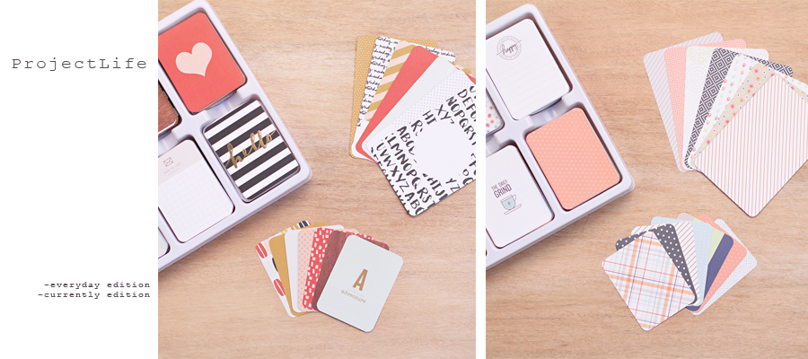 Project Life | Everyday Edition by Paislee Press & Currently Edition by One Little Bird