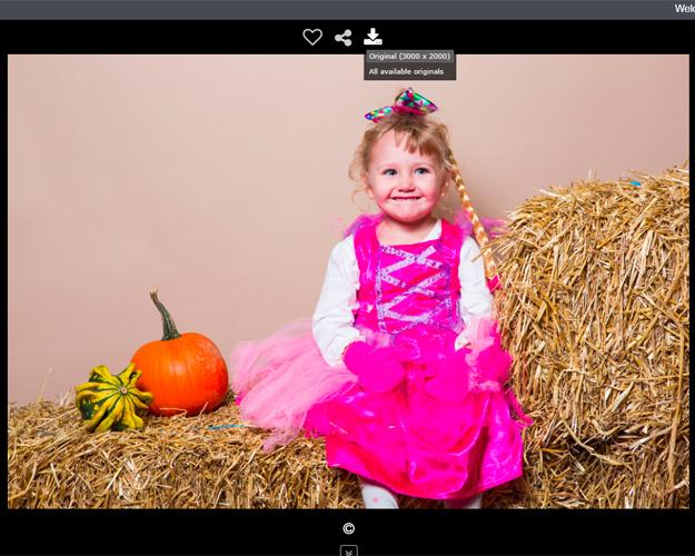 Halloween Snaps, 2017, Download Images Preview, Elisa Hubbard Studios